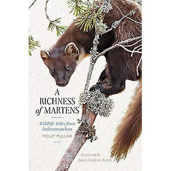 A Richness of Martens - Wildlife Tales from Ardnamurchan by A Richness