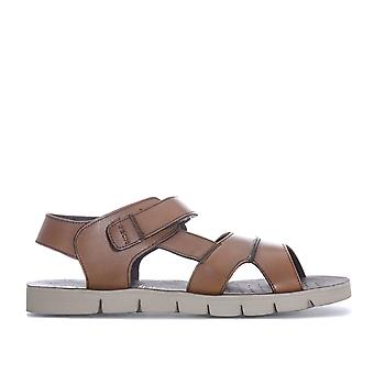 Mens Geox Glenn Sandals In Cognac