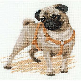 Pug Dog Counted Cross Stitch Kit 9.75