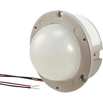HighPower LED module Warm white 2000 lm