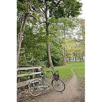 日本の自転車 - アラン ブラウシュタイン 24 ポスター印刷