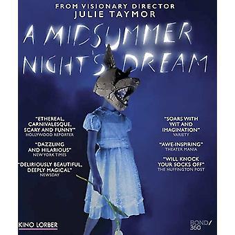 Midsummer Night's Dream (Julie Taymor) [Blu-ray] USA import
