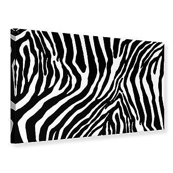 Canvas Print foto Wallaper Zebra patroon