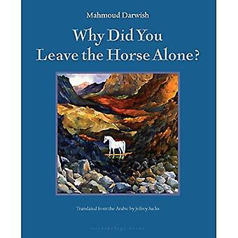 Why Did You Leave the Horse Alone?: