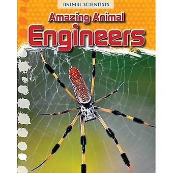 Animal Scientists Pack A of 5