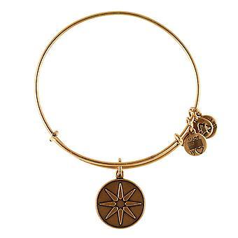 Alex et Ani Star de Vénus or bracelet A12EB08RG