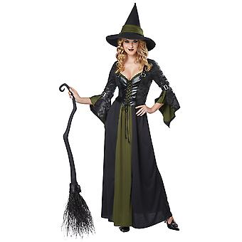 Classic Witch Wicked Green Halloween Women Costume