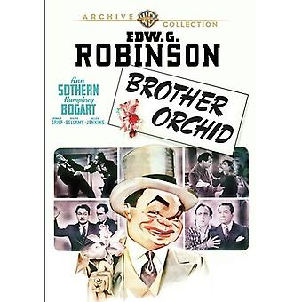 Brother Orchid (1940) [DVD] USA import
