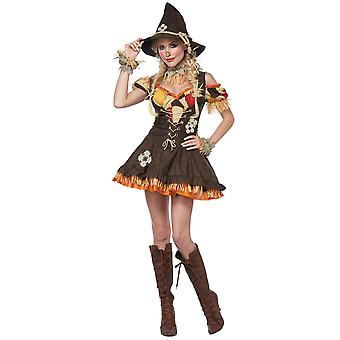 Épouvantail impertinent luxe magicien d'Oz Story Book semaine Halloween Womens Costume