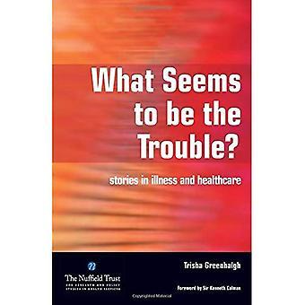 Mikä näyttää olevan ongelmana?: tarinat sairauden ja terveydenhuollon