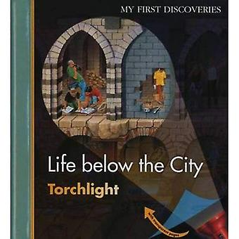 Life Below the City (First Discoveries: Torchlight)