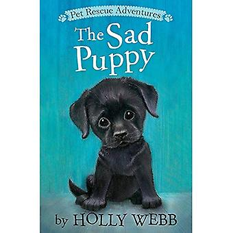 The Sad Puppy