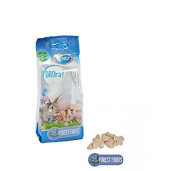 Duvo+ Rodents Drops 100 Gr Forest Fruits (Petits animaux , Lapins , Nourriture , Snacks)