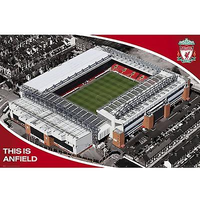 Liverpool affiche Stade 13