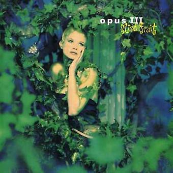 Opus III - huske frugten [CD] USA importerer