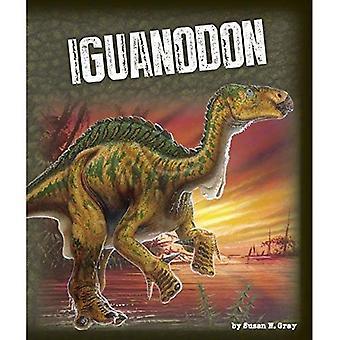 Iguanodon (esplorare Dinosaurs)