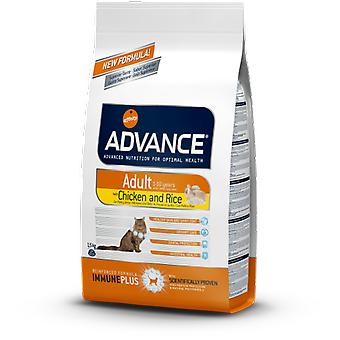 Advance Adult Chicken and Rice (Cats , Cat Food , Dry Food)