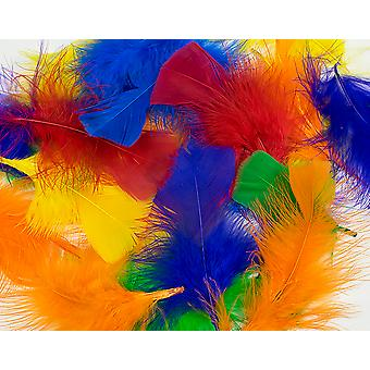 14g Bright Assorted Colour Craft Feathers