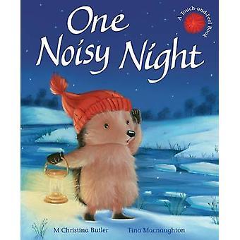One Noisy Night by M. Christina Butler - Tina MacNaughton - 978184869
