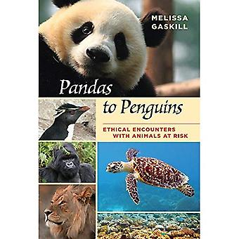 Pandas to Penguins: Ethical� Encounters with Animals at� Risk (W. L. Moody Jr Natural History Series)