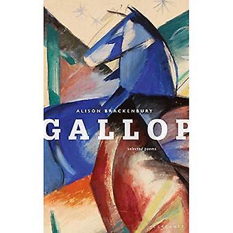 Galopp: Ausgewählte Gedichte