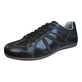 Geox U Houston A Mens Leather Trainers / Shoes - Dark Brown