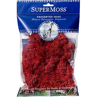 Preserved Glittered Reindeer Moss 2oz-Red RM214-02