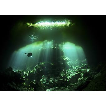 A diver in the Garden of Eden cenote system in Mexico Poster Print