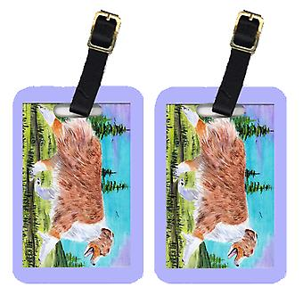 Carolines Treasures  SS8423BT Pair of 2 Australian Shepherd Luggage Tags