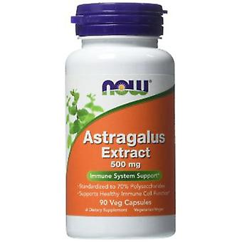 Now Foods Astragalus Extract 500 mg 90 Veggie Capsules