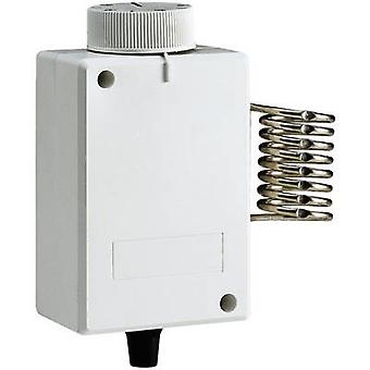 Industrial thermostat Structure 4 up to 40 °C 1TCTB088
