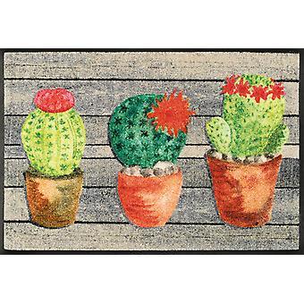 lavare + a secco Tappetino lavabile di Jardin de Cactus opaco 50 x 75 cm
