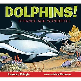 Dolphins! (Strange and Wonderful)