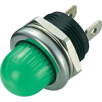 LED indicator light Green 12 Vdc SCI