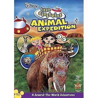 Little Einsteins - Little Einsteins: Animal Expedition [DVD] USA import