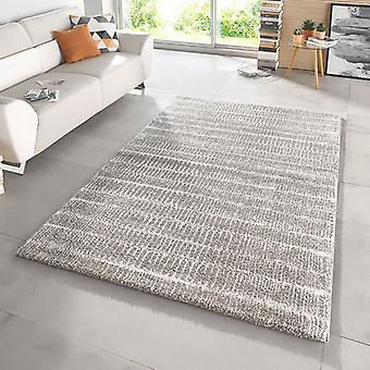 Ontwerpen van gesneden pool tapijt diepe stapel Nova grijs