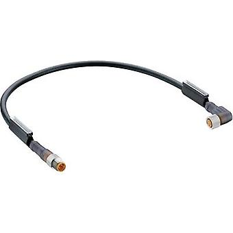 Lumberg automatisering RSMV 3-RKMWV 3-224/2 M Sensor kabel