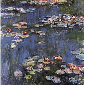 Claude Monet, Waterlilies, 50x50cm