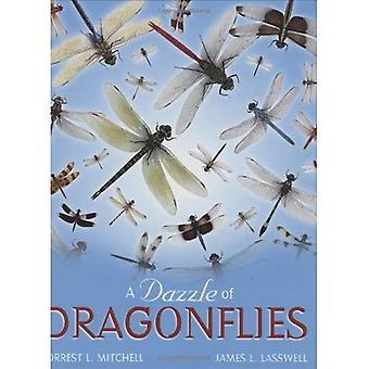 Un éblouissement de libellules (Peter N. Nevraumont livres (Texas A & m University Press))