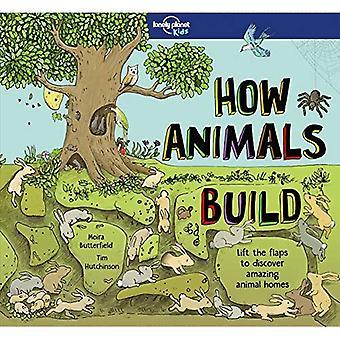 Comment construire des animaux (Lonely Planet Kids)