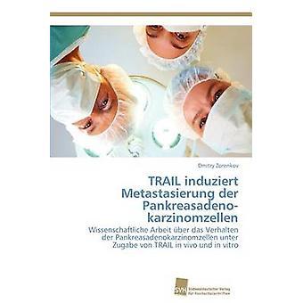 Trail des Pankreasadenokarzinomzellen Der Induziert Metastasierung par Zorenkov & Dmitry