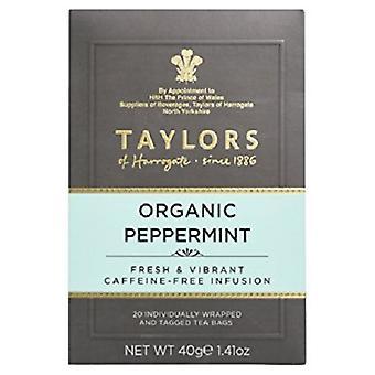 Taylors van Harrogate biologische pepermunt thee
