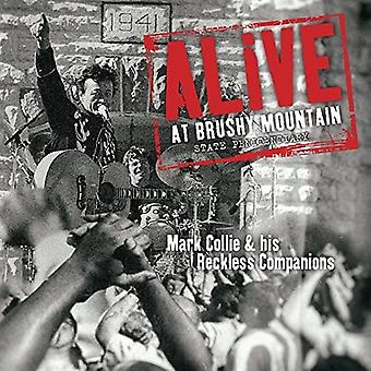 Mark Collie & His Re - Alive at Bushy M(2LP [Vinyl] USA import