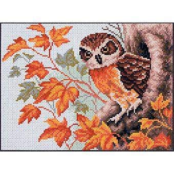Collection D'Art Stamped Cross Stitch Kit 28X34cm-Owl CDPA1010