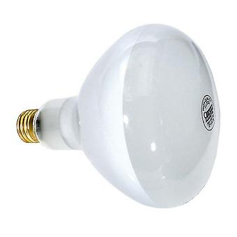 Hayward SPX0541Z1 300W 12V Medium Base Bulb R-40 for Underwater Lights