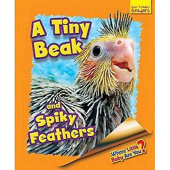 Whose Little Baby are You?: A Tiny Beak and Spiky Feathers
