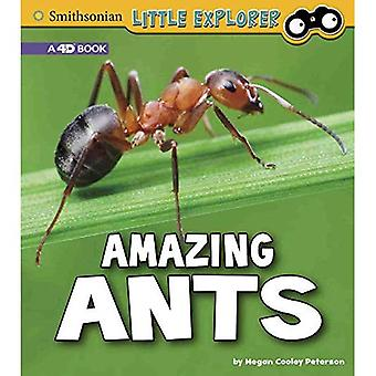 Amazing Ants: A 4D Book (Little Entomologist 4D)