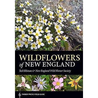 Wildflowers of New England by Ted Elliman - New England Wild Flower S