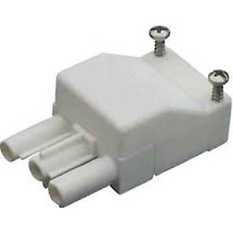 Wieland 93.731.3250.0 Compact Connector White