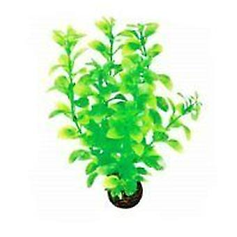 Superfish Easy Plant Midground 20cm (No 2)